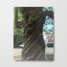 Intimate Tree #6 Metal Print