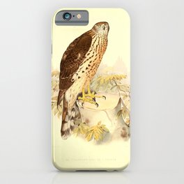Vintage Print - Treatise on Falconry (1844) - Plate 14: Male Goshawk iPhone Case