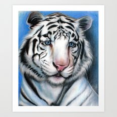 Snow Tiger Art Print