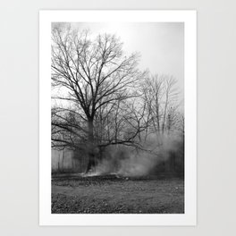 Ancient Wise Oak Trees And The Mystic Smoke Art Print