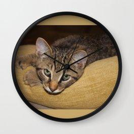 Sleepy Grey Cat on Green Pillow Wall Clock