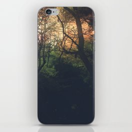 Ethereal Woods iPhone Skin
