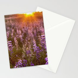 Better at sunset Stationery Cards