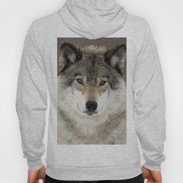 Winter Wolf Hoody