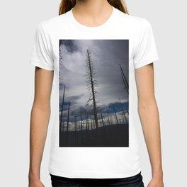 Burned Tree Against Sky T-shirt