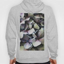 hydrangea flower macro Hoody