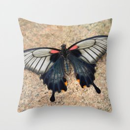 Beauty Butterfly by Teresa Thompson Throw Pillow