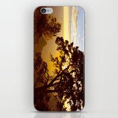 Grand Canyon sunrise iPhone & iPod Skin