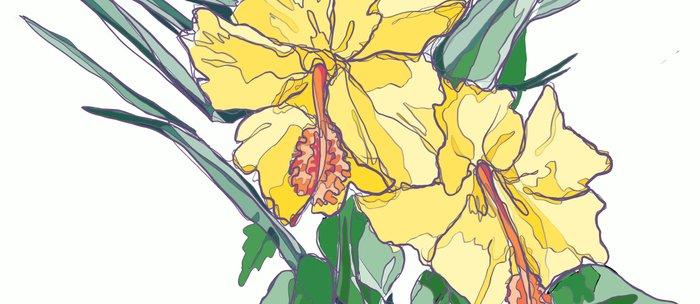 Yellow Hibiscus Coffee Mug By Devilishv Society6
