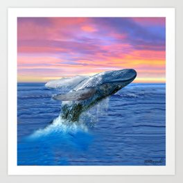 Breaching Humpback Whale at Sunset Art Print