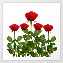 ORIGINAL GARDEN DESIGN OF RED ROSES ON WHITE Art Print