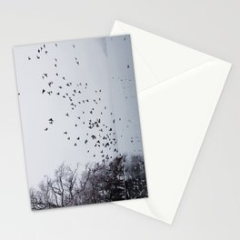 Birds Stationery Cards