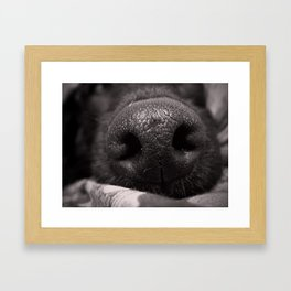 Love Is In The Wet Nose Of A Dog. Framed Art Print