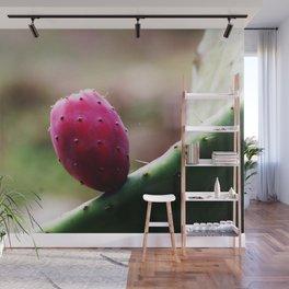 Prickly Pear Cactus Fruit Wall Mural
