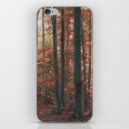 morton combs 01 iPhone Skin