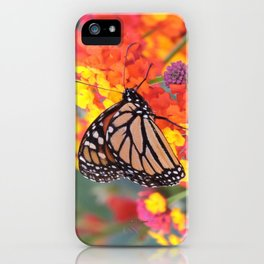 Monarch Feeding on Lantana iPhone Case