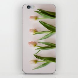 Four Tulips iPhone Skin