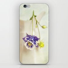 still life with Aquilegia iPhone & iPod Skin