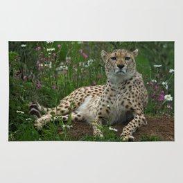 Cheetah Amidst Spring Flowers Rug