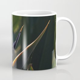 Striking Strelitzia Coffee Mug