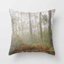 Serenity morning... Into the foggy woods Throw Pillow