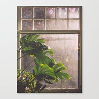 window Canvas Prints featuring Window by Melanie McKay