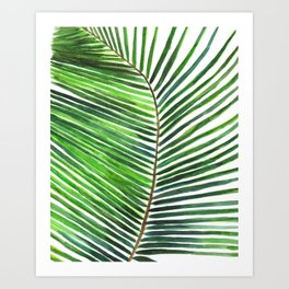 Palm watercolor leaf- Tropical print Art Print