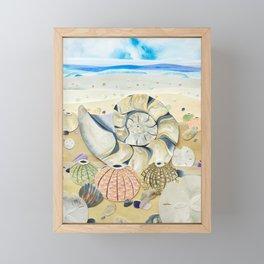 Nautilus Shell Beach Framed Mini Art Print