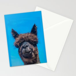 STRAW IS TRENDY Stationery Cards