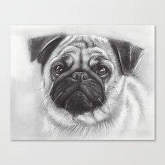 Cute Pug Dog Animal Pugs Portrait Canvas Print