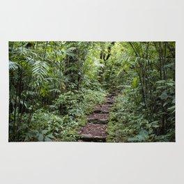 Steps Leading through the Lush Rainforest of Mombacho Volcano, Nicaragua Rug