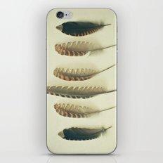 Feathers #2 iPhone & iPod Skin