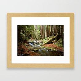 Crystal Stream Framed Art Print
