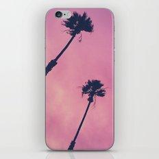 Pink Haze   Palms iPhone & iPod Skin