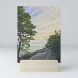 Road side beach Mini Art Print
