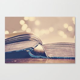 Book Love Canvas Print