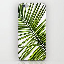 Palm leaf iPhone Skin