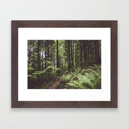 Woodland - Landscape and Nature Photography Framed Art Print