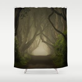 Mysterious alley at dawn Shower Curtain