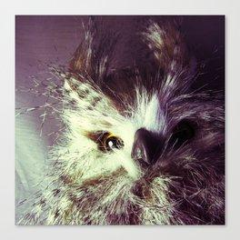 Birdy Mugshot Canvas Print