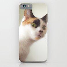 Investigation Mode iPhone 6s Slim Case