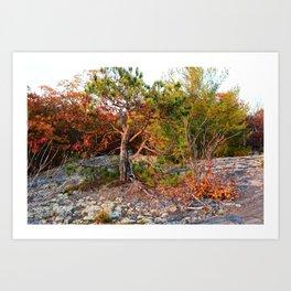 El Tree Art Print