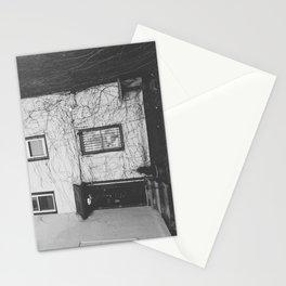 Vines - Harvard Square Stationery Cards