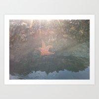 Make A Wish On A Star-Fish  Art Print