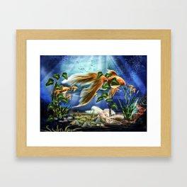 Goldfisch Amando Framed Art Print