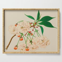 Fugen's Elephant Cherry Blossoms Serving Tray
