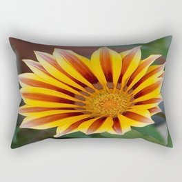 Single Flower Close Up Gazania Red Stripe Rectangular Pillow