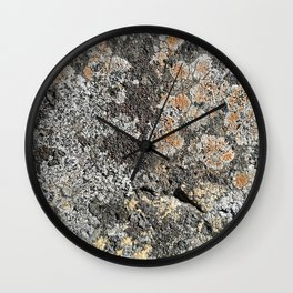 Lichen on the granite rock Wall Clock