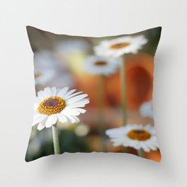 Daisys | marguerite Throw Pillow