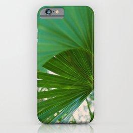 Curvy Fern Jungle Style iPhone Case